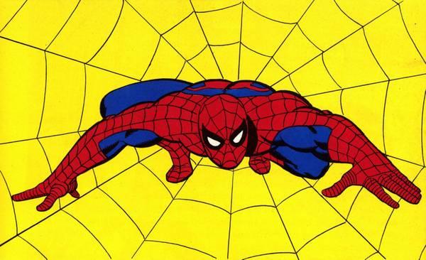 Spiderman festeggia anni al wow di milano opere